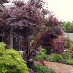 landscaping-miscellaneous-13