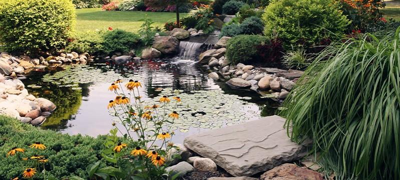Park City Landscaping