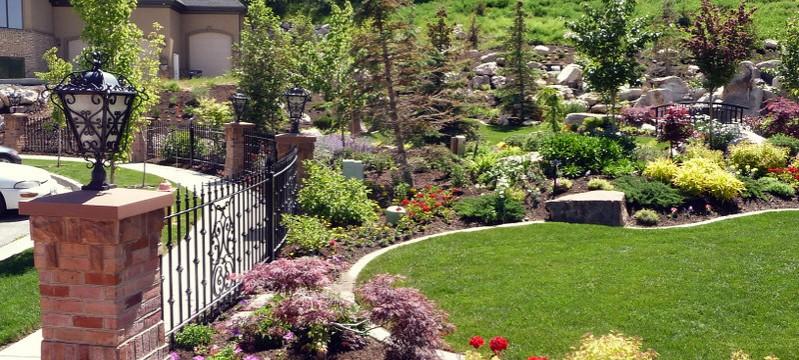 Planting, Trees, Shrubs, Perennials, Groundcover