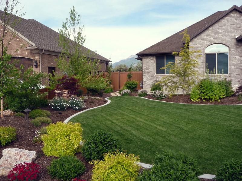 Sod – Richter Landscape, Inc. Lawn Replacement Options on