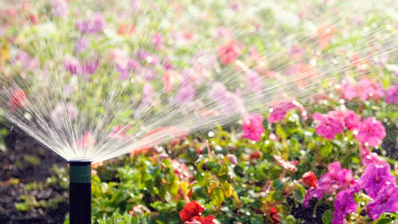 Bountiful Irrigation Installation