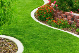 landscape designs-and-tips