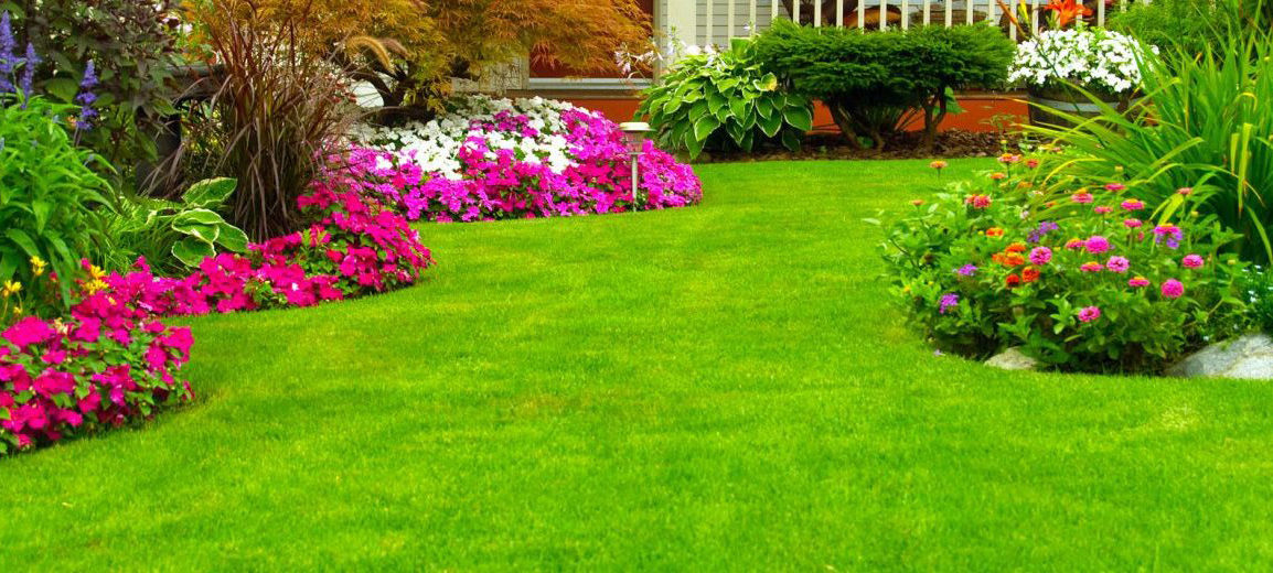 landscaping-company-near-by