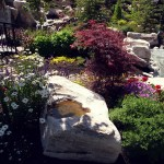 landscaping-miscellaneous-26