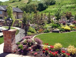 Planting, Trees, Shrubs, Perennials, Groundcover