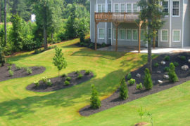 what-are-the-5-basic-landscaping-design-principles