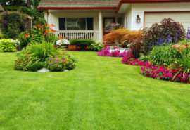what-are-the-7-principles-of-landscape-designs
