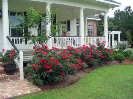 what-to-know-about-landscaping