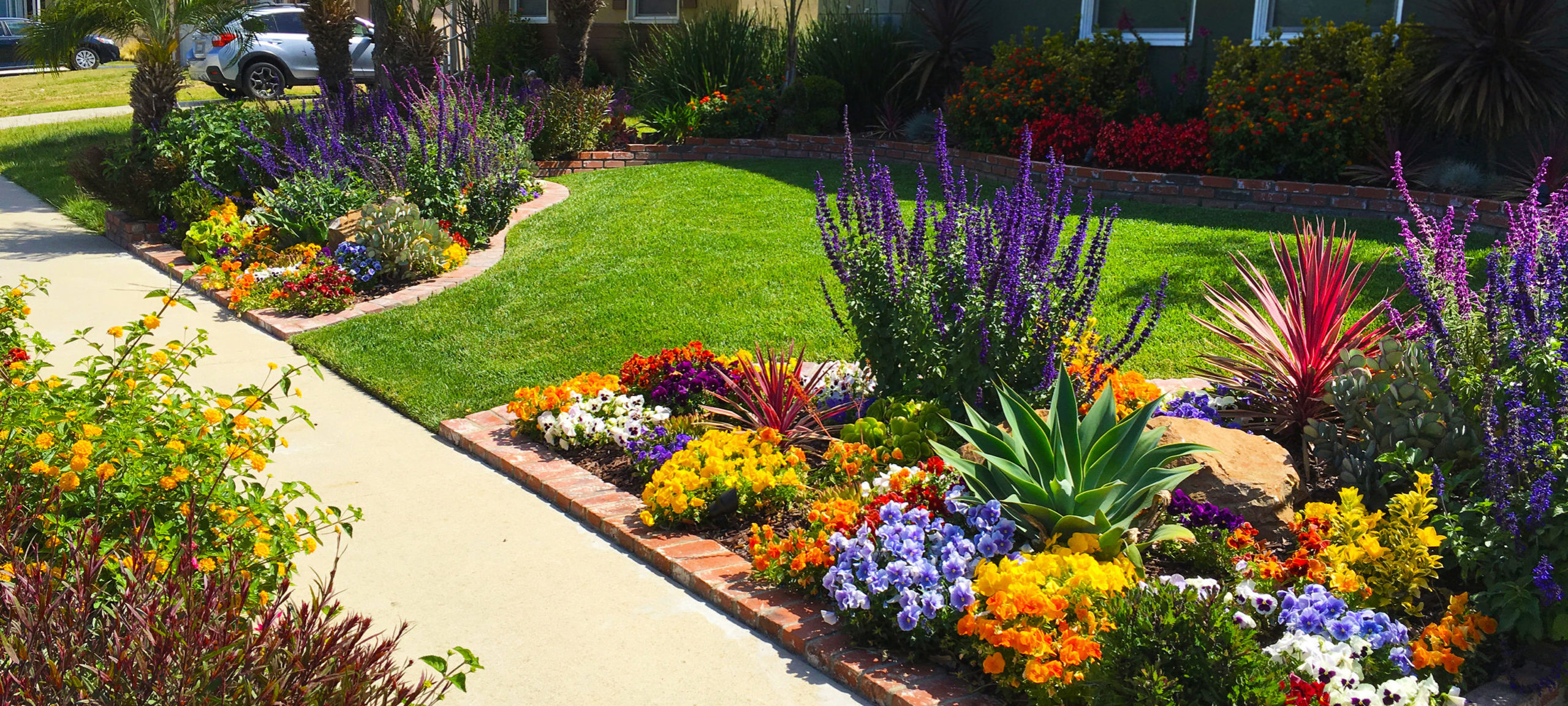 what-type-of-flowers-should-i-plant-for-my_home-in-utah